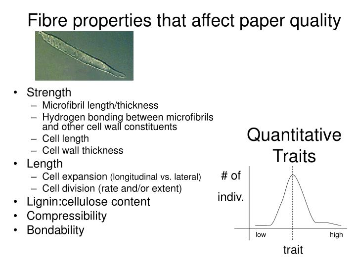 Fibre properties that affect paper quality