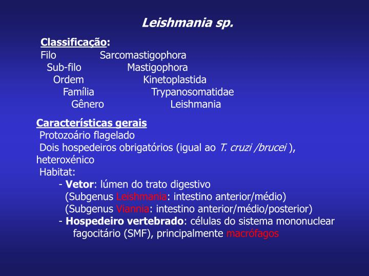 Leishmania sp.