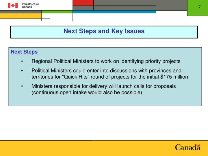 Next Steps and Key Issues