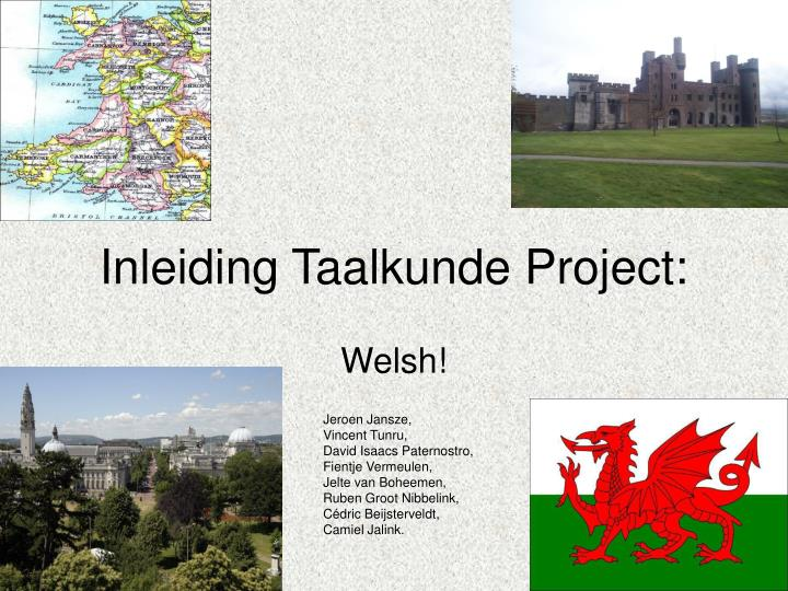 Inleiding taalkunde project