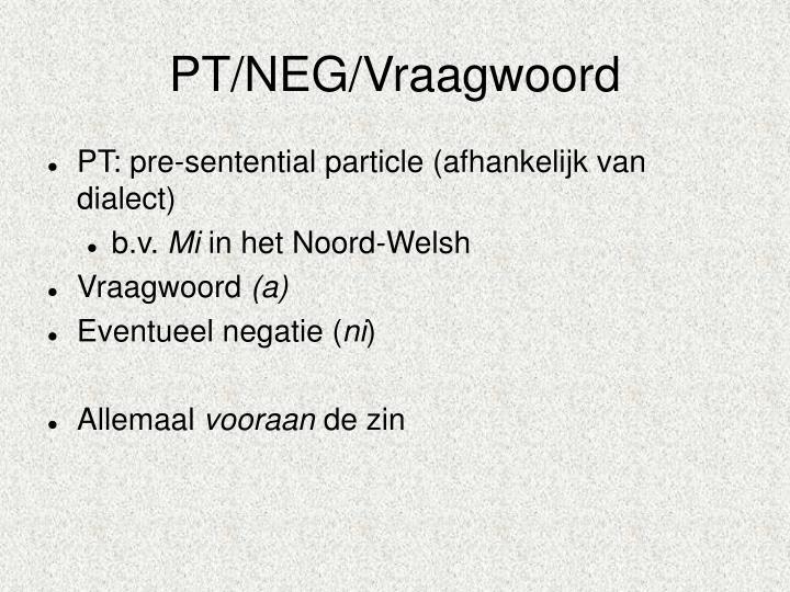 PT/NEG/Vraagwoord