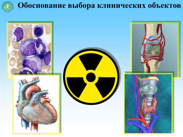 Обоснование выбора клинических объектов