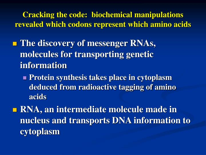 Cracking the code:  biochemical manipulations revealed which codons represent which amino acids
