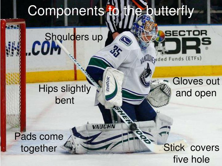 Components to the butterfly