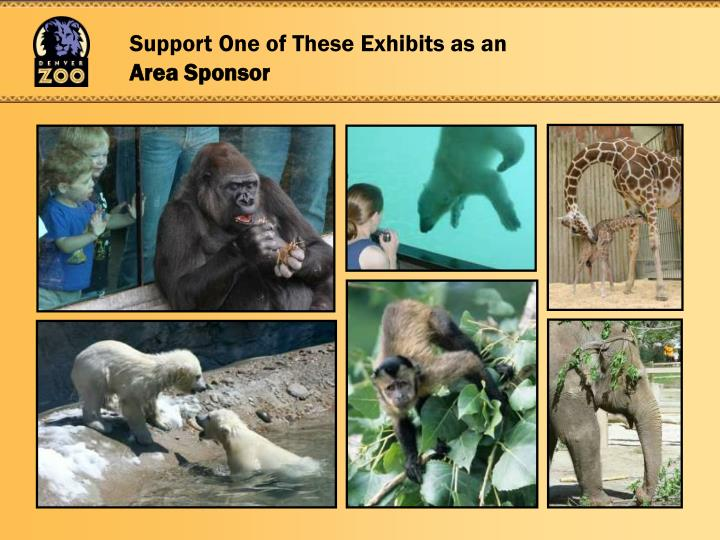 Support One of These Exhibits as an