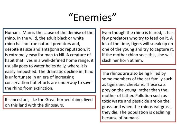 """""""Enemies"""""""