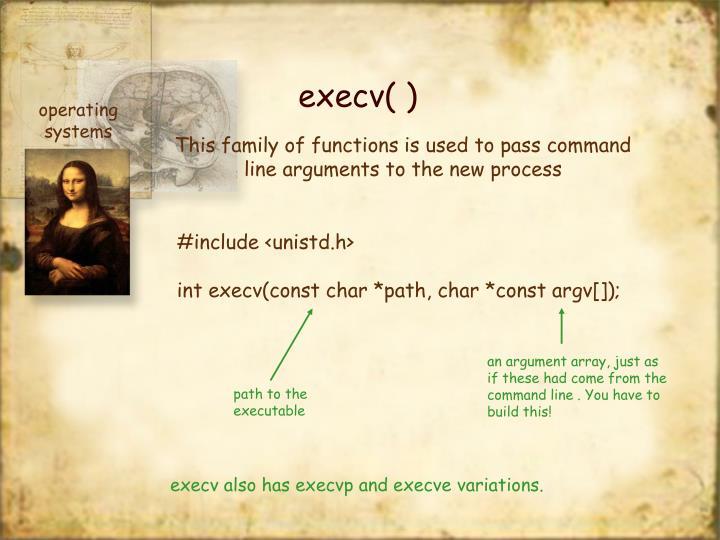 execv