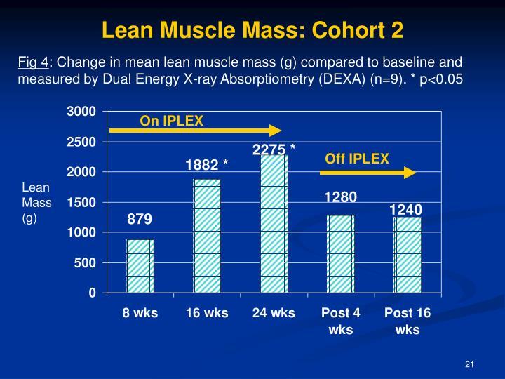 Lean Muscle Mass: Cohort 2