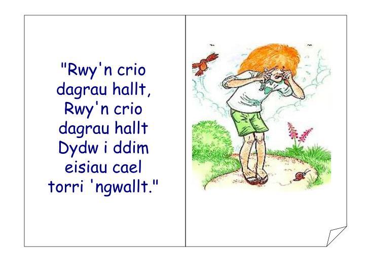 """""""Rwy'n crio dagrau hallt,"""