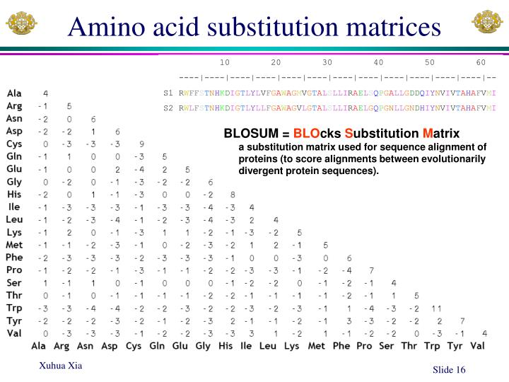 Amino acid substitution matrices