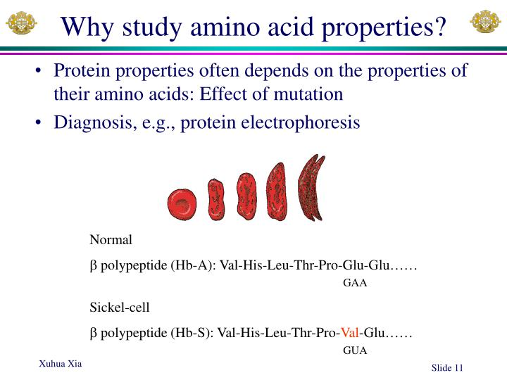 Why study amino acid properties?
