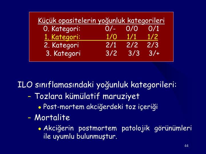 Küçük opasitelerin yoğunluk kategorileri