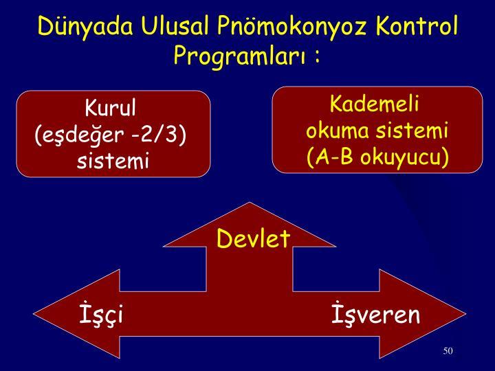 Dünyada Ulusal Pnömokonyoz Kontrol Programları :