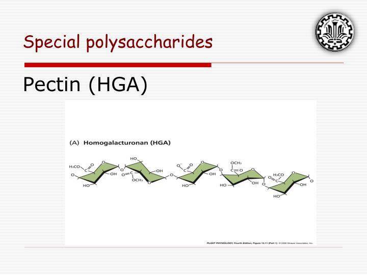 Pectin (HGA)
