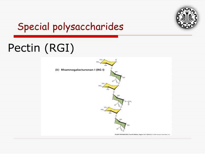 Pectin (RGI)