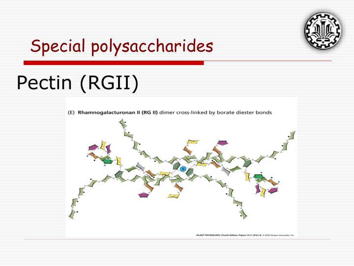 Pectin (RGII)