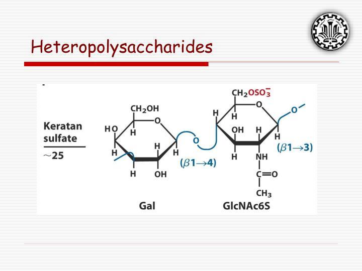 Heteropolysaccharides