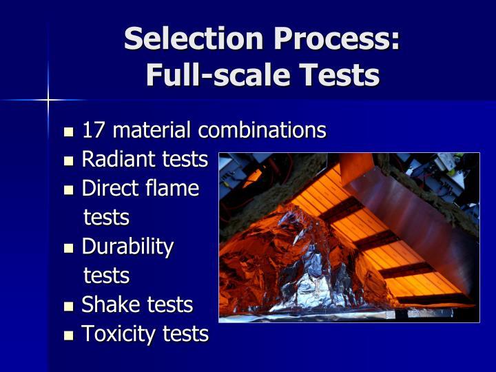 Selection Process: