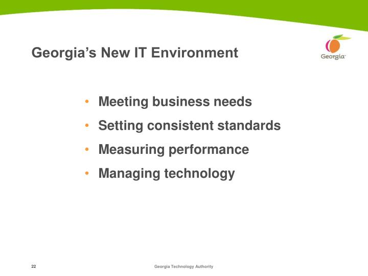Georgia's New IT Environment