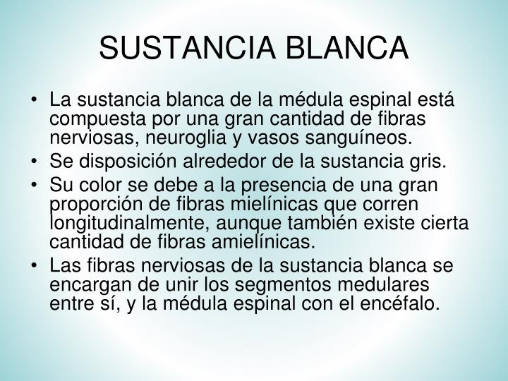 SUSTANCIA BLANCA