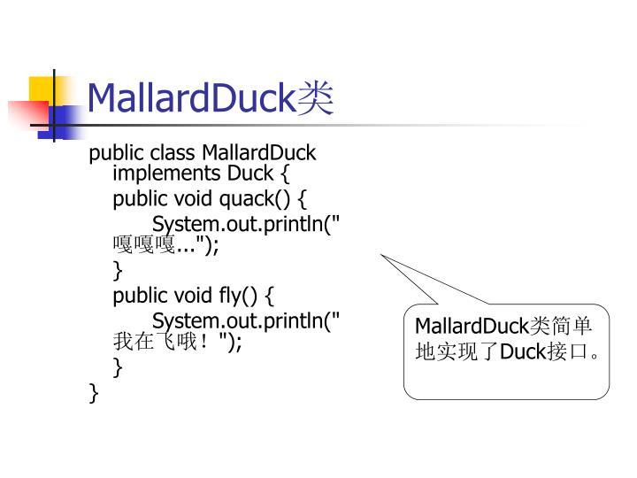 MallardDuck