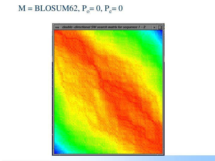 M = BLOSUM62, P