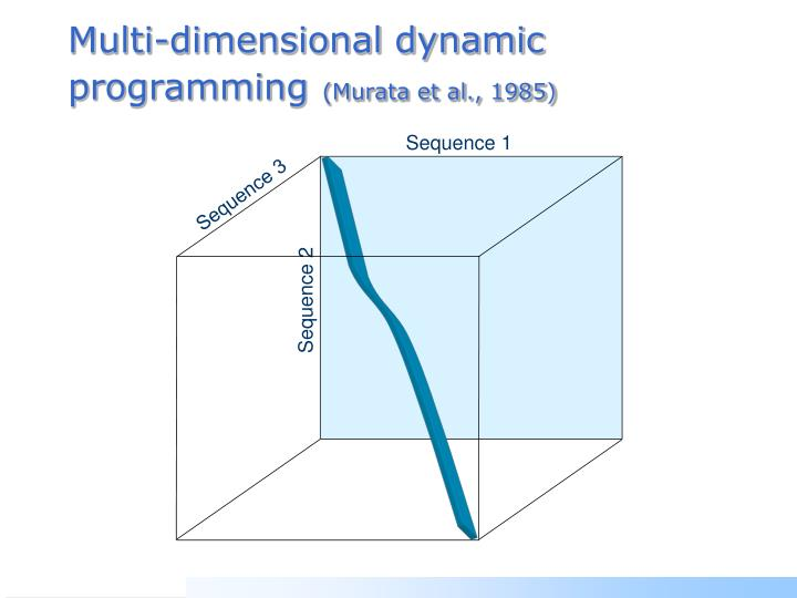Multi-dimensional dynamic programming