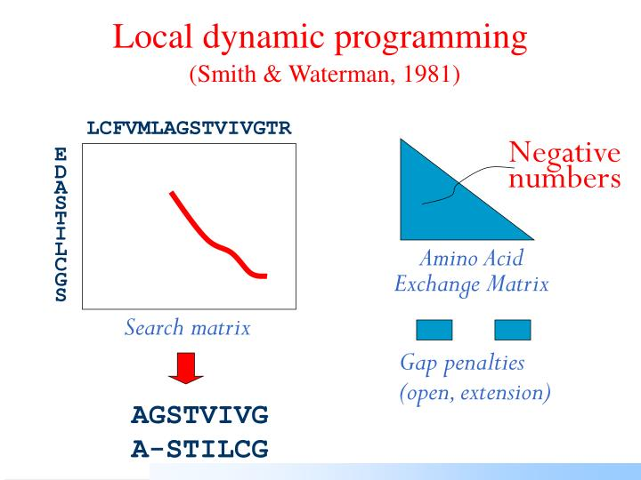 Local dynamic programming