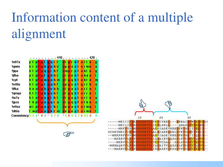 Information content of a multiple alignment