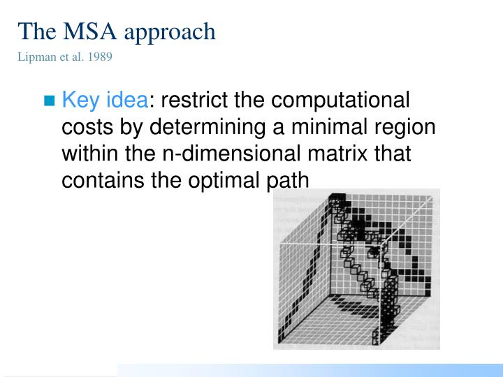 The MSA approach