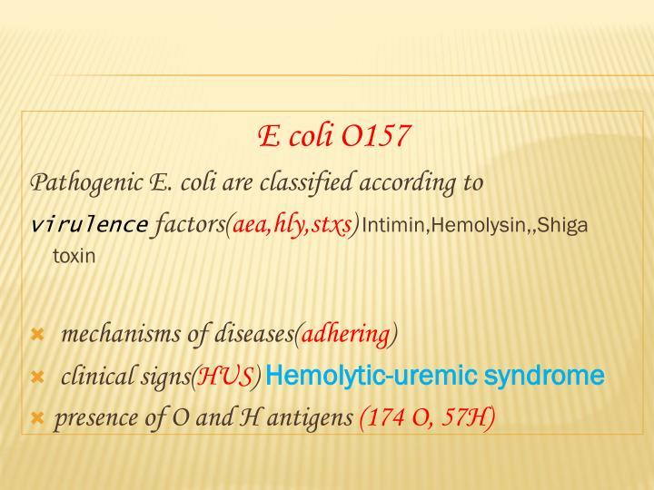 E coli O157