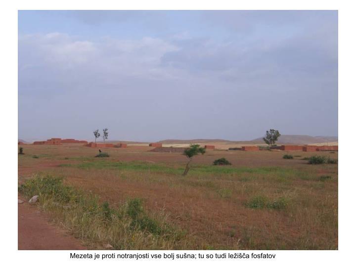 Mezeta je proti notranjosti vse bolj sušna; tu so tudi ležišča fosfatov