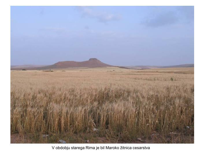 V obdobju starega Rima je bil Maroko žitnica cesarstva