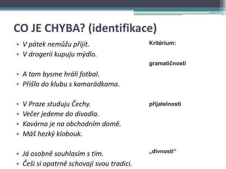 CO JE CHYBA? (identifikace)