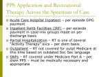 pps application and recreational therapy across the spectrum of care