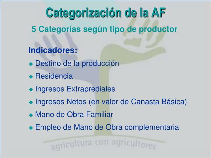 Categorización de la AF