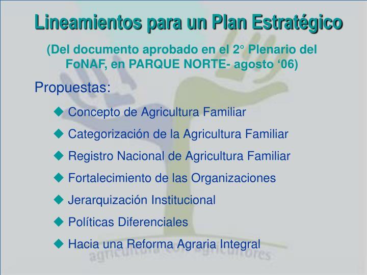 Lineamientos para un Plan Estratégico