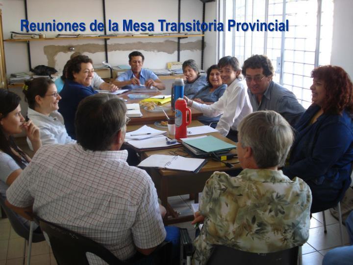Reuniones de la Mesa Transitoria Provincial