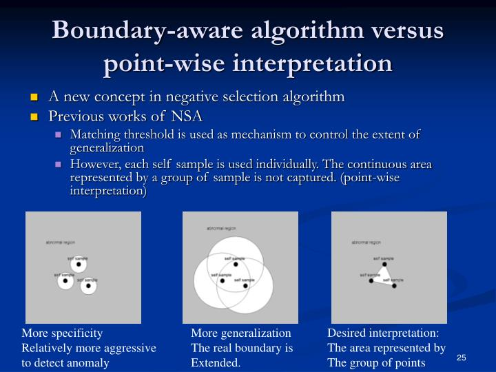 Boundary-aware algorithm versus point-wise interpretation
