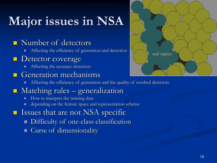 Major issues in NSA