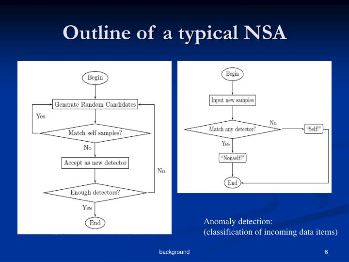 Outline of a typical NSA