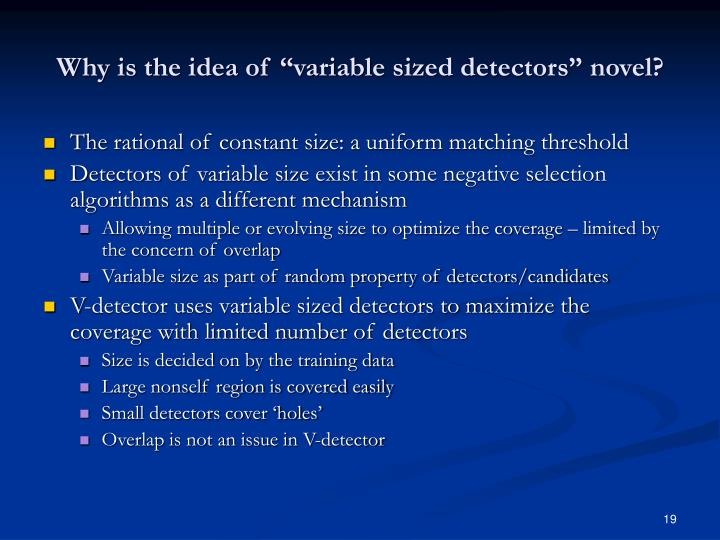 "Why is the idea of ""variable sized detectors"" novel?"