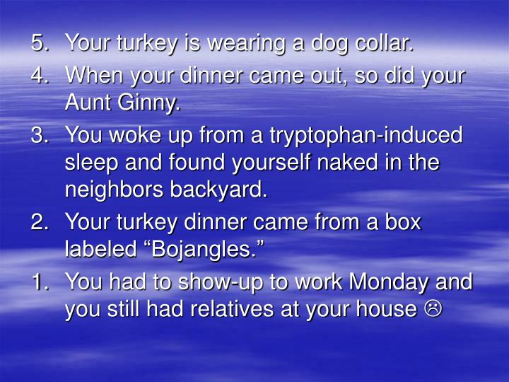 5. 	Your turkey is wearing a dog collar.