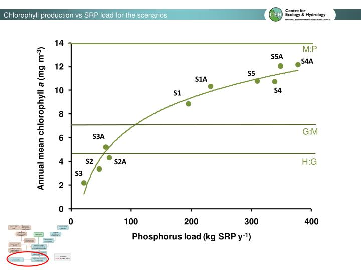 Chlorophyll production vs SRP load for the scenarios