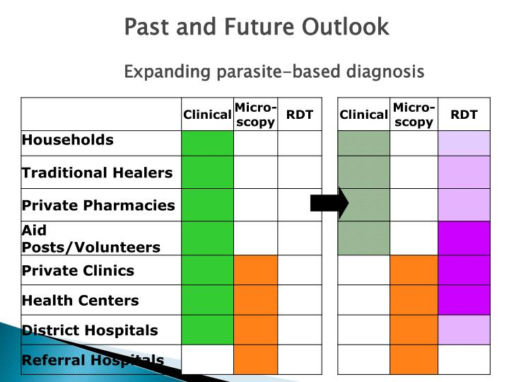 Past and Future Outlook