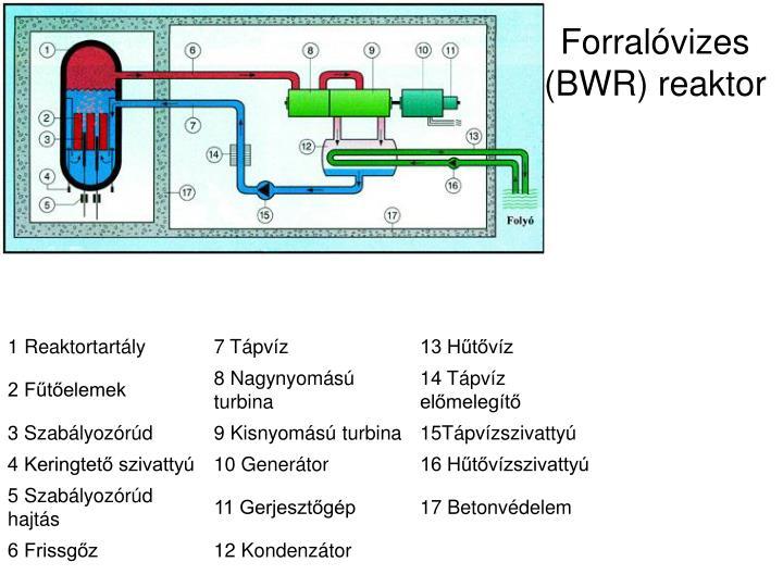 Forralóvizes (BWR) reaktor