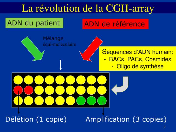 La révolution de la CGH-array