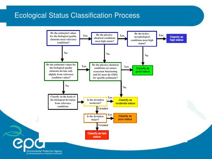 Ecological Status Classification Process
