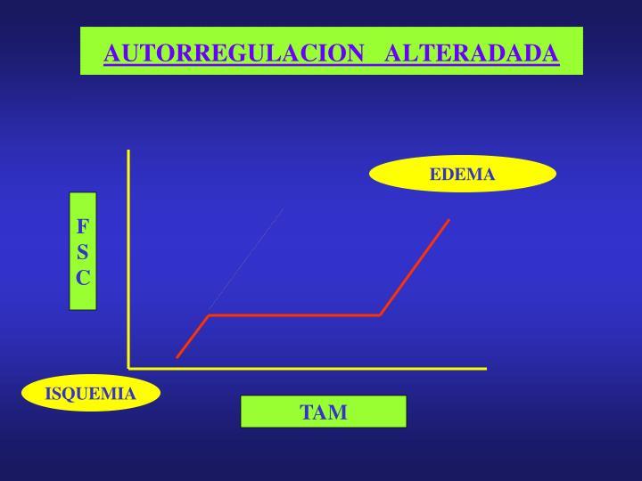 AUTORREGULACION   ALTERADADA