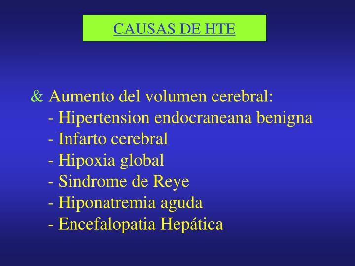 CAUSAS DE HTE